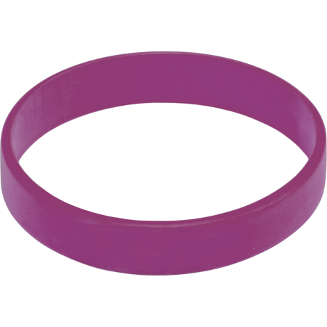Express Silicone Wristband - Purple